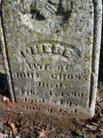 GROSS, WHEBE - Pike County, Ohio | WHEBE GROSS - Ohio Gravestone Photos
