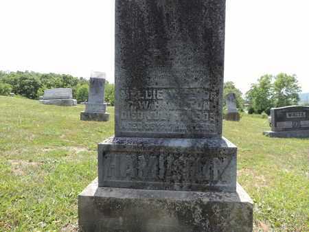 HAMILTON, MELLIE - Pike County, Ohio | MELLIE HAMILTON - Ohio Gravestone Photos