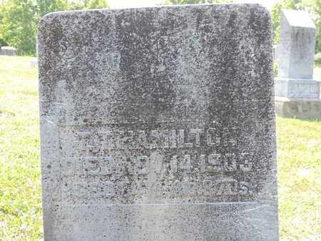 HAMILTON, T.T. - Pike County, Ohio | T.T. HAMILTON - Ohio Gravestone Photos