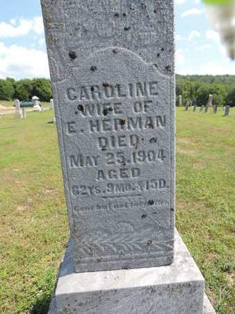 HERMAN, CARDLINE - Pike County, Ohio | CARDLINE HERMAN - Ohio Gravestone Photos