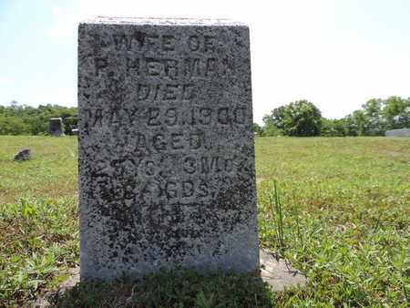 HERMAN, CLARIE B. - Pike County, Ohio | CLARIE B. HERMAN - Ohio Gravestone Photos