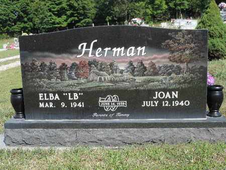 HERMAN, JOAN - Pike County, Ohio | JOAN HERMAN - Ohio Gravestone Photos