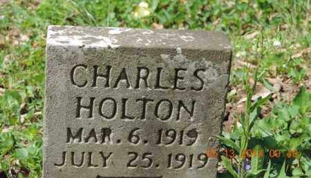 HOLTON, CHARLES - Pike County, Ohio | CHARLES HOLTON - Ohio Gravestone Photos