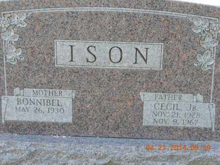 ISON, CECIL - Pike County, Ohio | CECIL ISON - Ohio Gravestone Photos