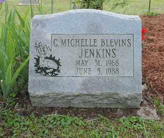 BLEVINS JENKINS, C. MICHELLE - Pike County, Ohio | C. MICHELLE BLEVINS JENKINS - Ohio Gravestone Photos