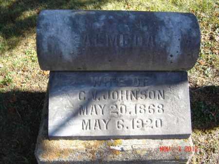 JOHNSON, ALMEDA - Pike County, Ohio | ALMEDA JOHNSON - Ohio Gravestone Photos