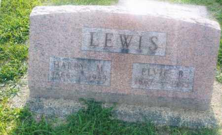 LEWIS, HARRY M. - Pike County, Ohio | HARRY M. LEWIS - Ohio Gravestone Photos