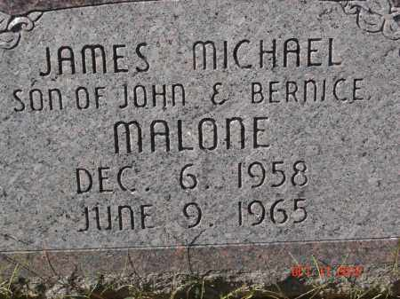 MALONE, JAMES MICHAEL - Pike County, Ohio | JAMES MICHAEL MALONE - Ohio Gravestone Photos