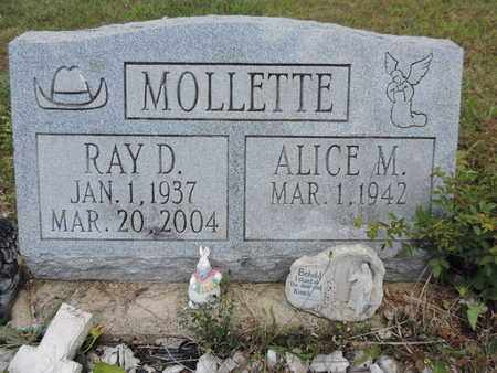 MOLLETTE, ALICE M. - Pike County, Ohio | ALICE M. MOLLETTE - Ohio Gravestone Photos