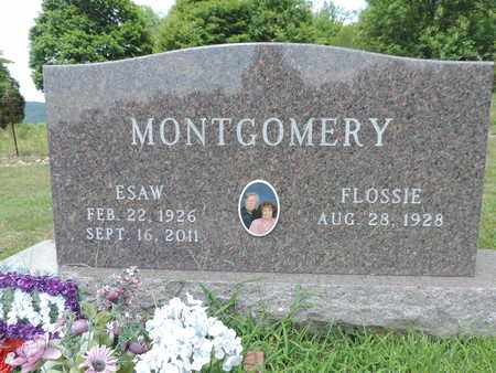 MONTGOMERY, ESAW - Pike County, Ohio | ESAW MONTGOMERY - Ohio Gravestone Photos