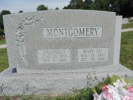 MONTGOMERY, MARY LIZ - Pike County, Ohio | MARY LIZ MONTGOMERY - Ohio Gravestone Photos
