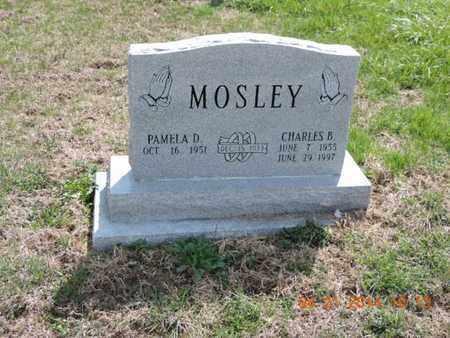 MOSLEY, PAMELA D - Pike County, Ohio | PAMELA D MOSLEY - Ohio Gravestone Photos