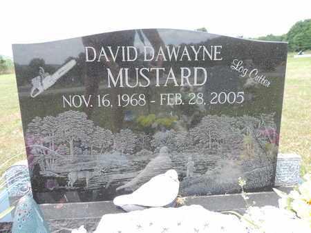 MUSTARD, DAVID DAWAYNE - Pike County, Ohio | DAVID DAWAYNE MUSTARD - Ohio Gravestone Photos