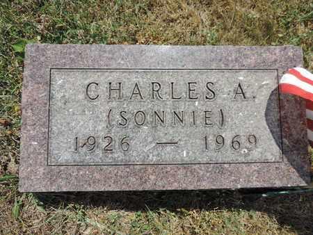 NO NAME, CHARLES A. - Pike County, Ohio   CHARLES A. NO NAME - Ohio Gravestone Photos