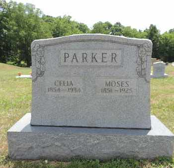 PARKER, MOSES - Pike County, Ohio | MOSES PARKER - Ohio Gravestone Photos