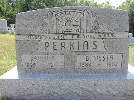 PERKINS, PAULINA - Pike County, Ohio | PAULINA PERKINS - Ohio Gravestone Photos