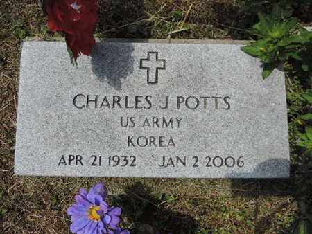POTTS, CHARLES J. - Pike County, Ohio | CHARLES J. POTTS - Ohio Gravestone Photos