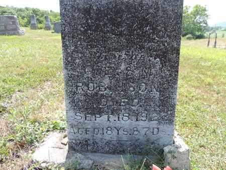 ROBINSON, DAUGHTER - Pike County, Ohio | DAUGHTER ROBINSON - Ohio Gravestone Photos
