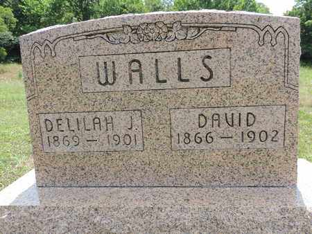 WALLS, DAVID - Pike County, Ohio | DAVID WALLS - Ohio Gravestone Photos