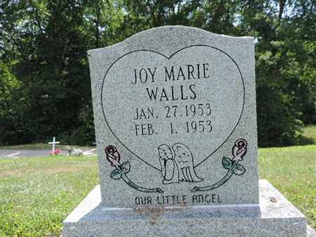 WALLS, JOY MARIE - Pike County, Ohio | JOY MARIE WALLS - Ohio Gravestone Photos
