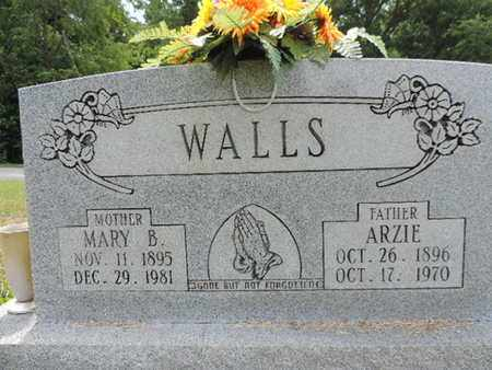 WALLS, ARZIE - Pike County, Ohio | ARZIE WALLS - Ohio Gravestone Photos