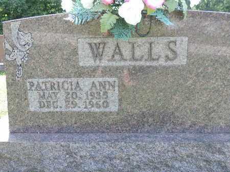 WALLS, PATRICIA ANN - Pike County, Ohio | PATRICIA ANN WALLS - Ohio Gravestone Photos