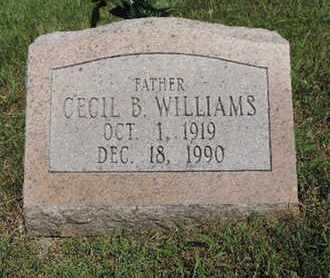 WILLIAMS, CECIL B - Pike County, Ohio | CECIL B WILLIAMS - Ohio Gravestone Photos