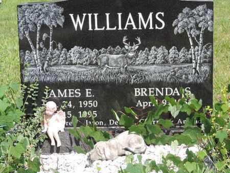WILLIAMS, BRENDA S. - Pike County, Ohio | BRENDA S. WILLIAMS - Ohio Gravestone Photos