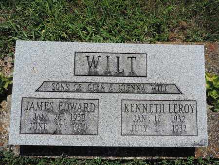 WILT, JAMES EDWARD - Pike County, Ohio | JAMES EDWARD WILT - Ohio Gravestone Photos