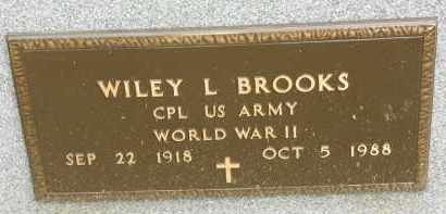 BROOKS, WILEY L - Portage County, Ohio | WILEY L BROOKS - Ohio Gravestone Photos