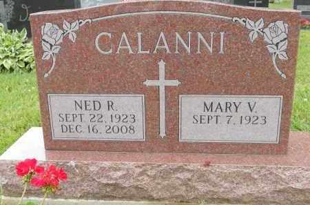 CALANNI, NED R - Portage County, Ohio | NED R CALANNI - Ohio Gravestone Photos