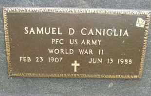 CANIGLIA, SAMUEL D - Portage County, Ohio | SAMUEL D CANIGLIA - Ohio Gravestone Photos