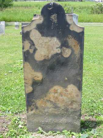 DIVER, PEGGY - Portage County, Ohio | PEGGY DIVER - Ohio Gravestone Photos