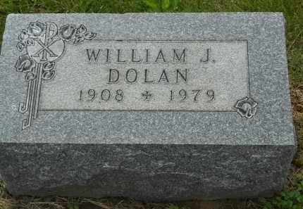 DOLAN, WILLIAM J - Portage County, Ohio | WILLIAM J DOLAN - Ohio Gravestone Photos