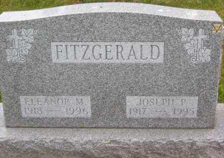 FITZGERALD, ELEANOR M - Portage County, Ohio | ELEANOR M FITZGERALD - Ohio Gravestone Photos