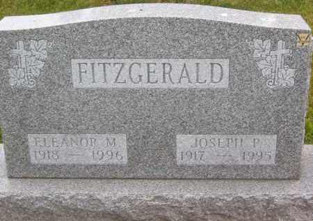 FITZGERALD, JOSEPH P - Portage County, Ohio | JOSEPH P FITZGERALD - Ohio Gravestone Photos