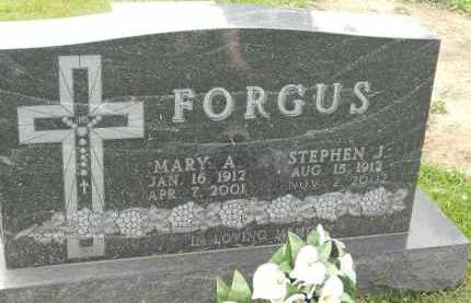 FORGUS, MARY A - Portage County, Ohio | MARY A FORGUS - Ohio Gravestone Photos