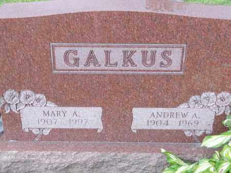 GALKUS, MARY A - Portage County, Ohio | MARY A GALKUS - Ohio Gravestone Photos