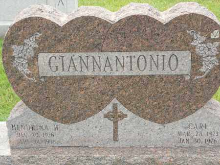 GIANNANTONIO, HENDRINA M - Portage County, Ohio | HENDRINA M GIANNANTONIO - Ohio Gravestone Photos