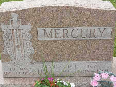 MERCURY, FRANCES M - Portage County, Ohio | FRANCES M MERCURY - Ohio Gravestone Photos