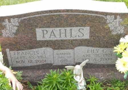 PAHLS, ELLY C - Portage County, Ohio | ELLY C PAHLS - Ohio Gravestone Photos