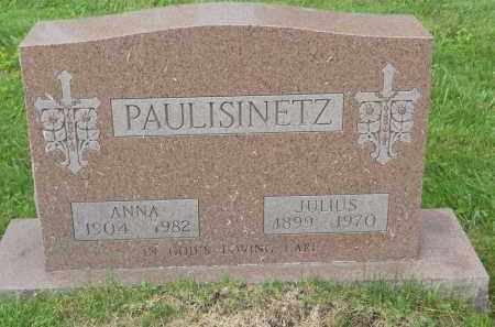 PAULISINETZ, ANNA - Portage County, Ohio | ANNA PAULISINETZ - Ohio Gravestone Photos