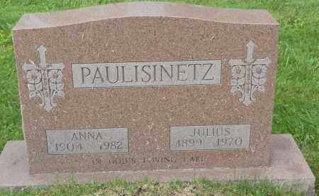 PAULISINETZ, JULIUS - Portage County, Ohio | JULIUS PAULISINETZ - Ohio Gravestone Photos