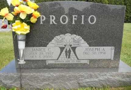 PROFIO, JANICE C - Portage County, Ohio | JANICE C PROFIO - Ohio Gravestone Photos