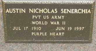 SENERCHIA, AUSTIN NICHOLAS - Portage County, Ohio | AUSTIN NICHOLAS SENERCHIA - Ohio Gravestone Photos