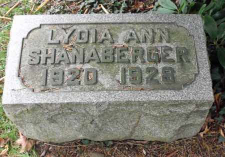 SHANABERGER, LYDIA ANN - Portage County, Ohio | LYDIA ANN SHANABERGER - Ohio Gravestone Photos