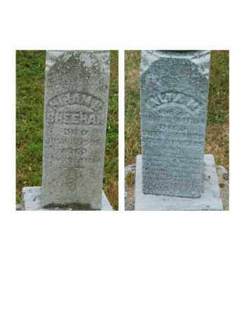 SHEEHAN, ALTA - Portage County, Ohio | ALTA SHEEHAN - Ohio Gravestone Photos