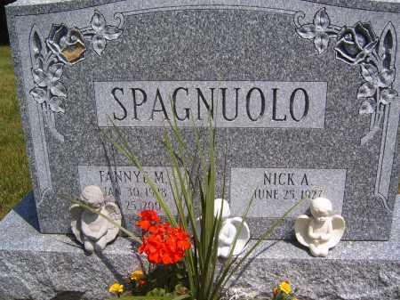 SPAGNUOLO, FANNY M - Portage County, Ohio | FANNY M SPAGNUOLO - Ohio Gravestone Photos