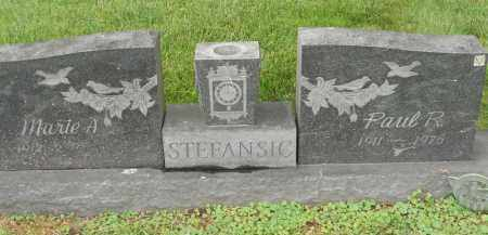 STEFANSIC, PAUL R - Portage County, Ohio | PAUL R STEFANSIC - Ohio Gravestone Photos