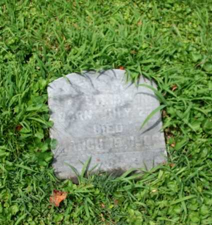 STRICKLING, HESTON - Portage County, Ohio | HESTON STRICKLING - Ohio Gravestone Photos